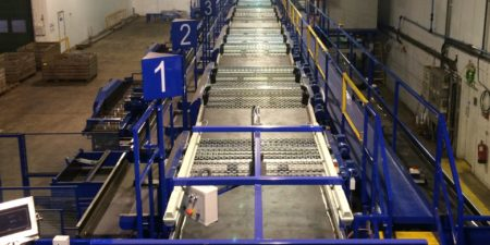Onion Grading & Handling Line from Tong