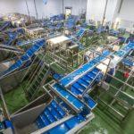 Tong announces broader vegetable processing portfolio through partnership with Marcelissen