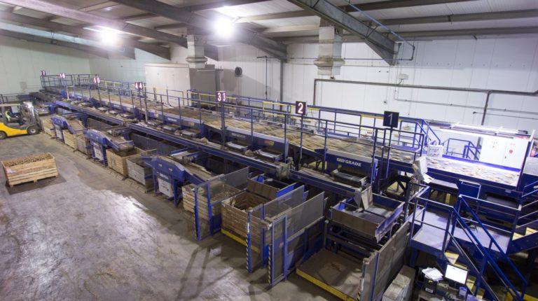 Potato Grading & Handling Line from Tong – Produce World UK