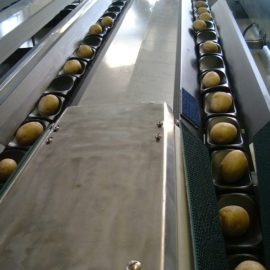 MAF Roda Weight Grading