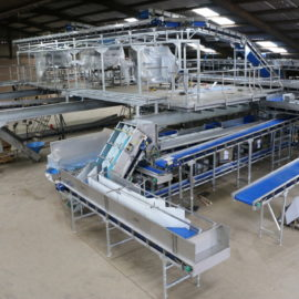 New Carrot Handling Facility at Poskitts set to be the UK's most advanced