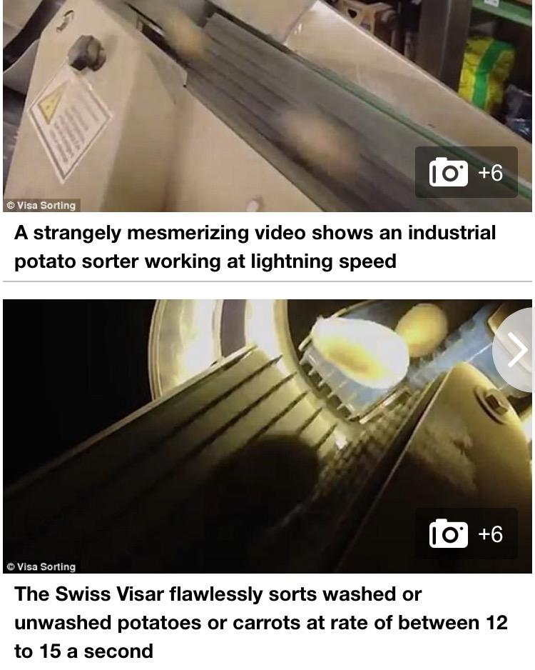 Daily Mail Visar Sortop Potato Optical Sorter Article (2)