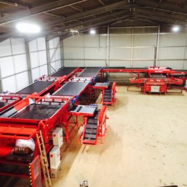 New Tong potato grading line increases throughput for Cornwall grower
