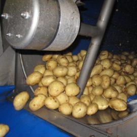 TPS-PRO Vegetable Polisher
