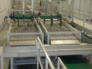 Vibrating Length Grader - Carrot Grading   Tong Engineering