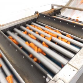 Tong rolls out cutting-edge technology to proven vegetable grader