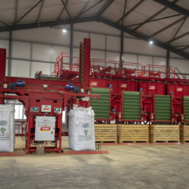 Tong grading line boosts productivity at B&C Farming