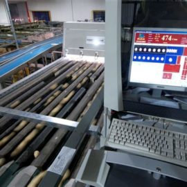 MAF RODA Potato and Onion Optical Sorting