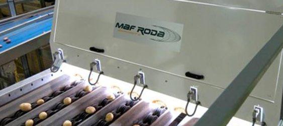 MAF RODA Potato and Onion Optical Sorting