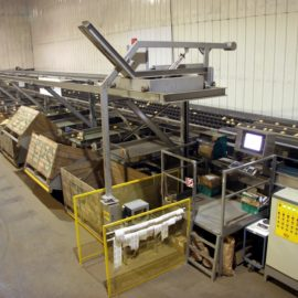 MAF Roda Vegetable Sorting Machine