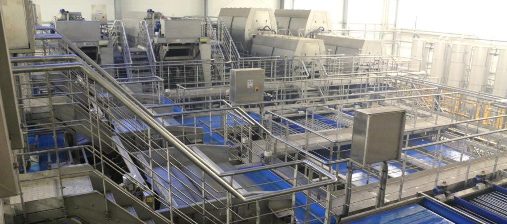 Tong Carrot Washing Grading Packhouse Line