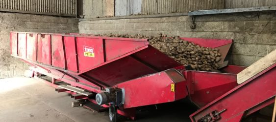 Used Tong Grading Line