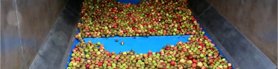 Cider Apple Loading Hoppers