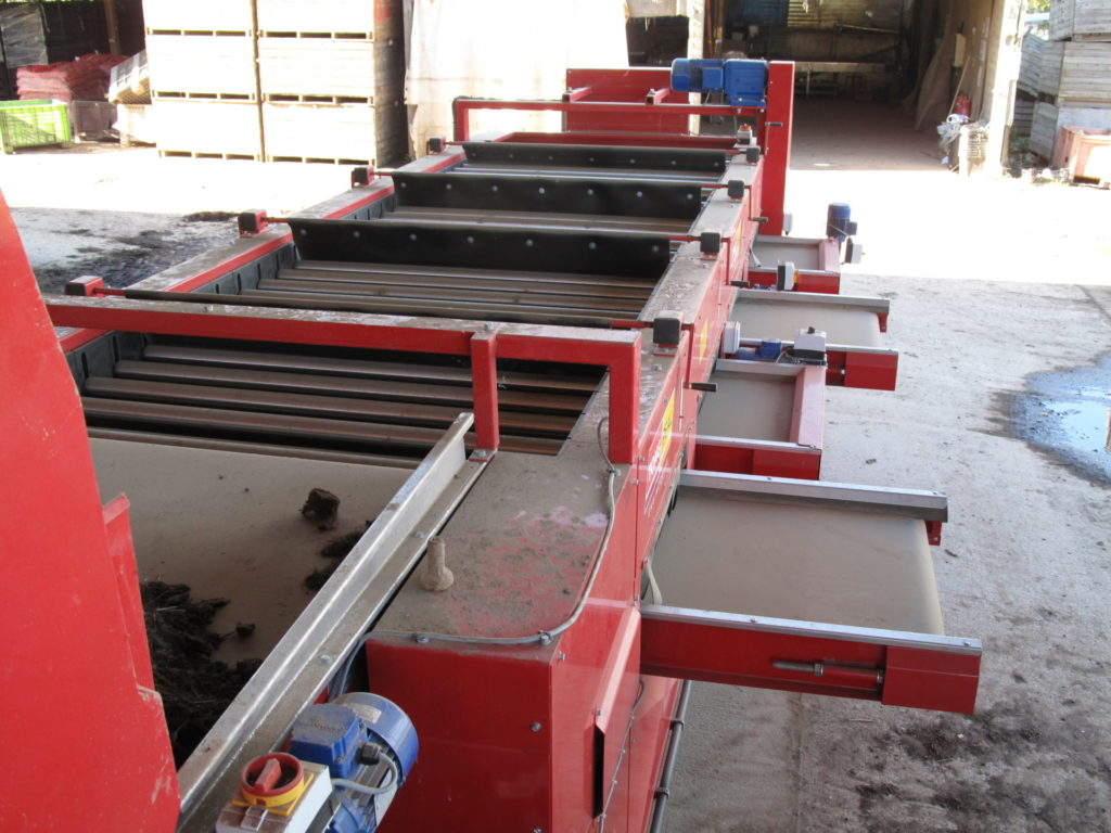 Bulb Grader Amp Bulb Conveyor Equipment Tong Engineering Uk