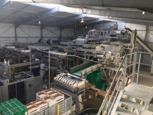 Potato Processing Line Video | Tong Engineering