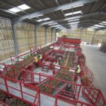 Tong gears up for US Potato Expo in Orlando