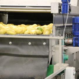 Vegetable Dryers