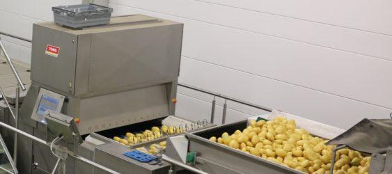 Newtec Potato Optical Sorting